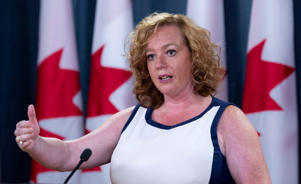 Lisa MacLeod, Ontario's Minister of Children, Community and Social Services speaks with the media in Ottawa, Monday August 13, 2018.