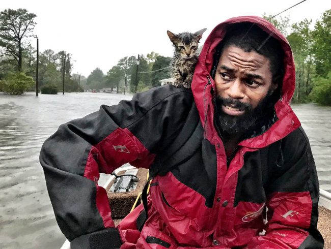 "Robert Simmons Jr. and his kitten ""Survivor"" are rescued from floodwaters after Hurricane Florence dumped several inches of rain in the area, Sept. 14, 2018 in New Bern, N.C."