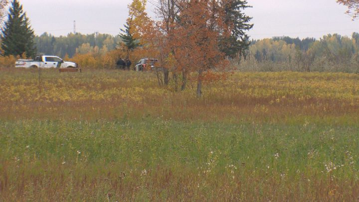 Alberta Fish and Wildlife employees were on scene near Weaselhead Flats on Sunday after multiple reports of black bear sightings.