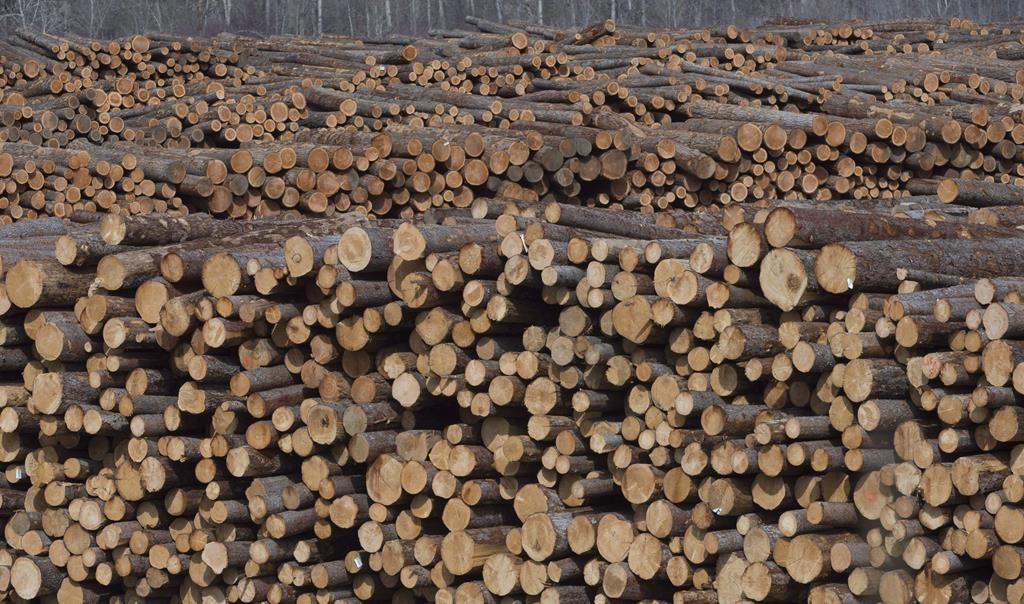Softwood lumber is pictured at Tolko Industries in Heffley Creek, B.C., April, 1, 2018.