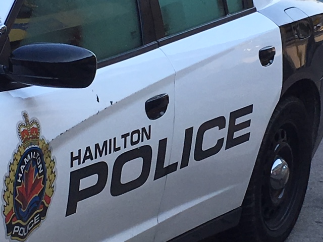 Hamilton police have charged a teenager in connection with a series of reported break and enters.