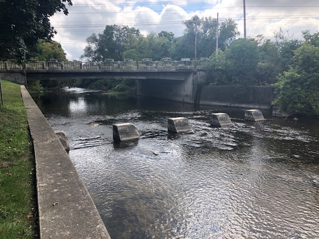 Guelph's Speed River may turn pink amid testing: city - Guelph    Globalnews.ca