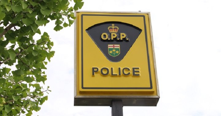 Belwood, Ont. man charged with sexual assault: OPP | Globalnews.ca
