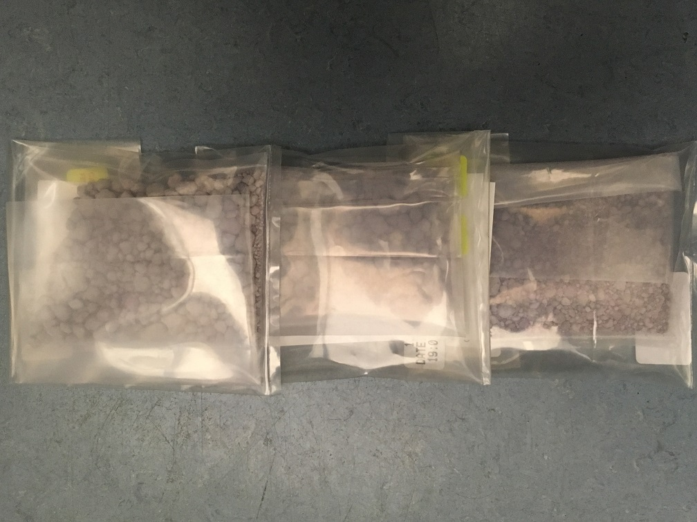 Police seized $98,000 worth of purple fentanyl in a drug bust in north Edmonton August 2018.