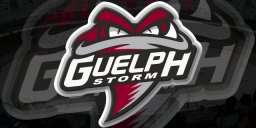 Continue reading: Guelph Storm top West standings after 2 weekend wins