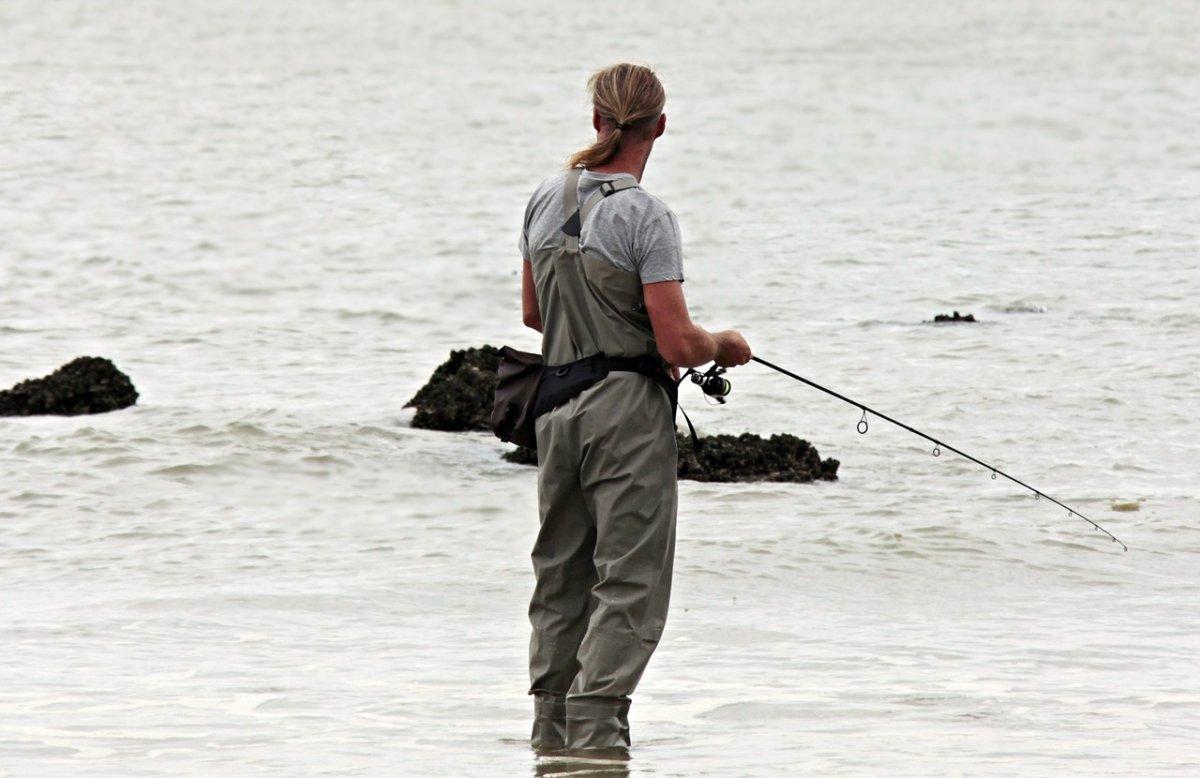 The Manitoba Wildlife Federation is warning of sharply declining fish stocks in Lake Winnipeg.
