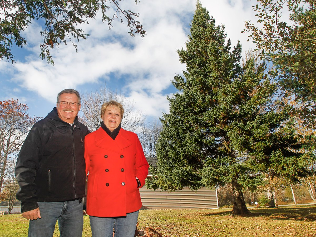 Ross McKellar and Teresa Simpson from Oxford, N.S. who are donating the 14-metre white spruce tree to Boston.