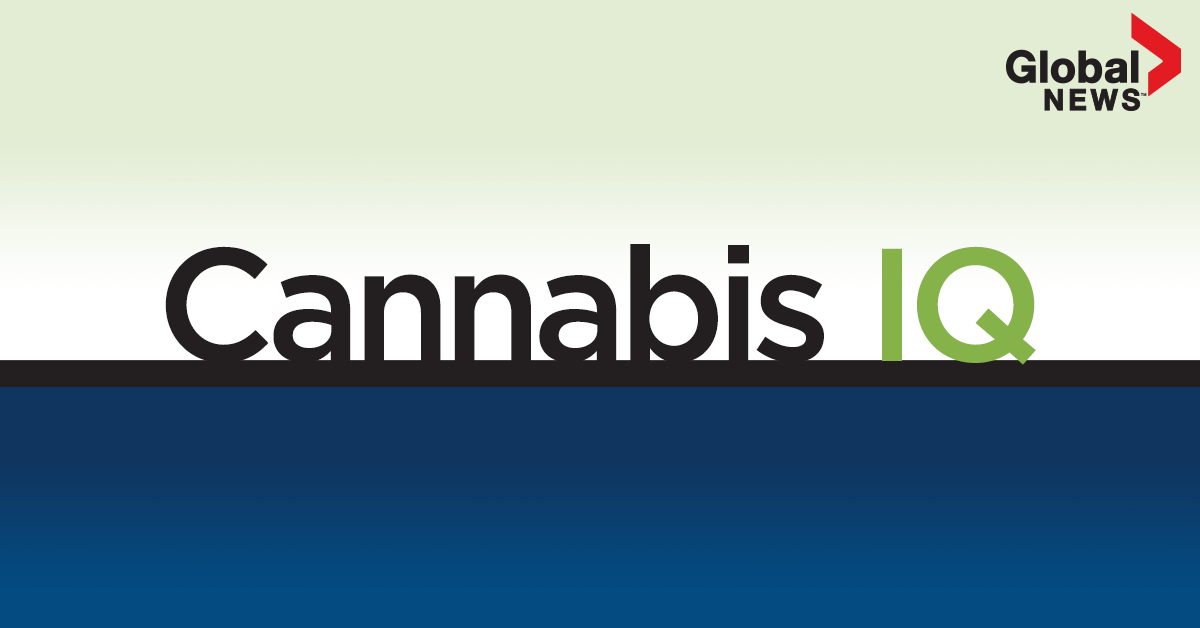 Cannabis IQ: Get your weekly news and information about legalization - image