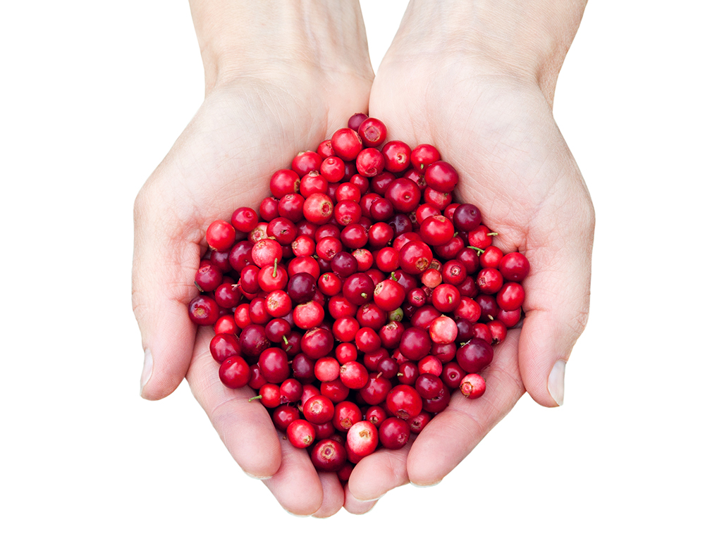 Cranberries are one of the lowest-sugar fruits.