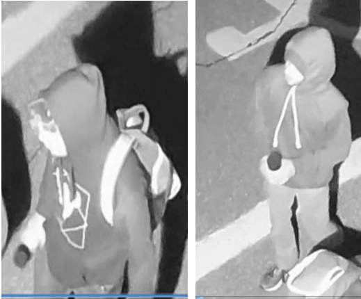 Brantford police are looking for two suspects in connection with a hate crime.