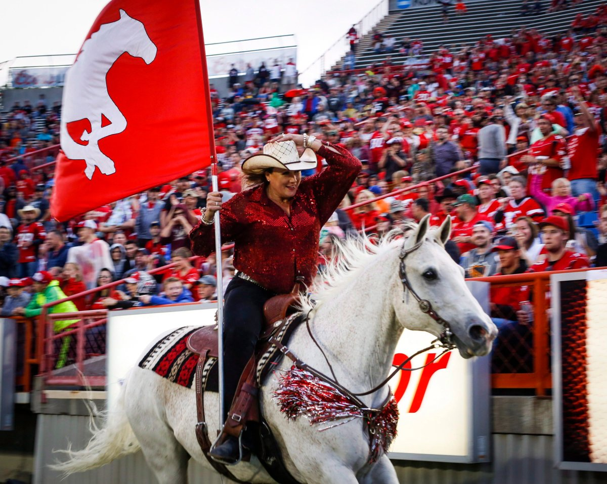 Calgary Stampeders touchdown horse Quick Six may be allowed to charge down the sidelines at the 2018 Grey Cup.