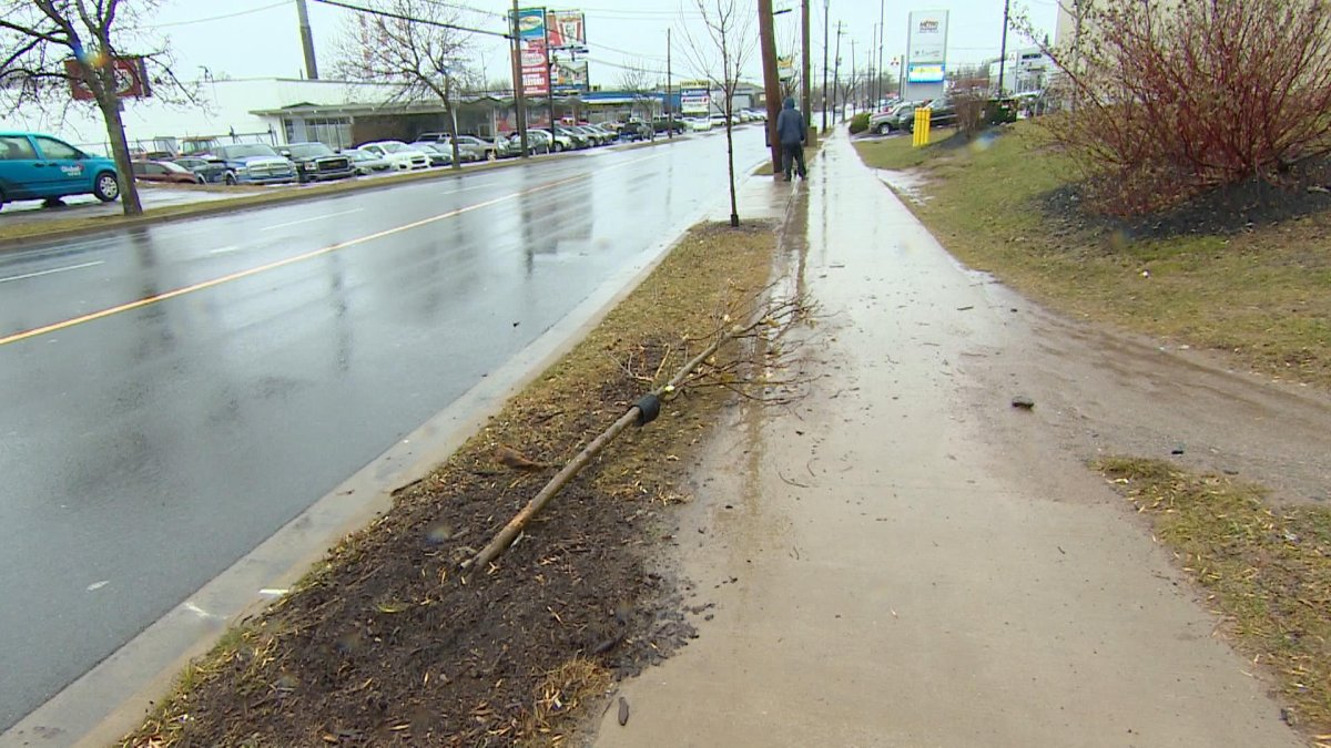 A vehicle had reportedlystruck a tree at the intersection of Wyse Road and Albro Lake Road in Dartmouth on Nov. 26, 2018.