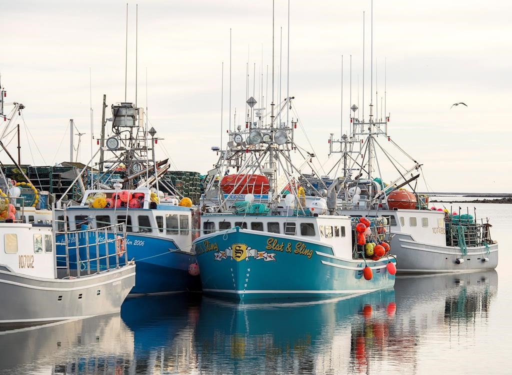 Boats remain tied to the wharf in Clark's Harbour, N.S., on Monday, November 26, 2018.