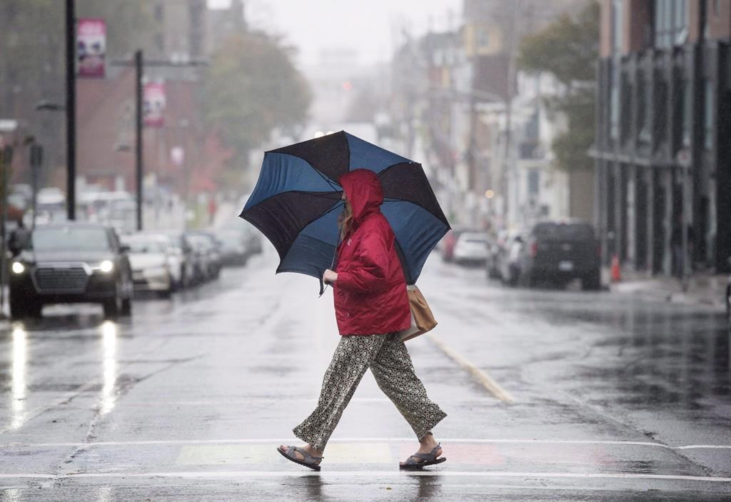 Monday's forecast is calling for a high of 21 C and a low of 9 C in London..