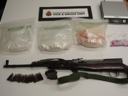Continue reading: Hamilton police seize $220K in drugs from mountain residence