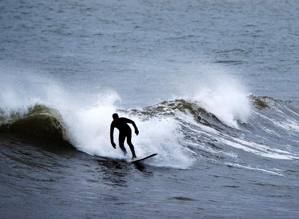 A surfer trides a wave in Cow Bay, N.S. on Wednesday, Nov. 28, 2018. Surfing is a year-round activity in Nova Scotia with great conditions and ample resources to accommodate all skill levels.