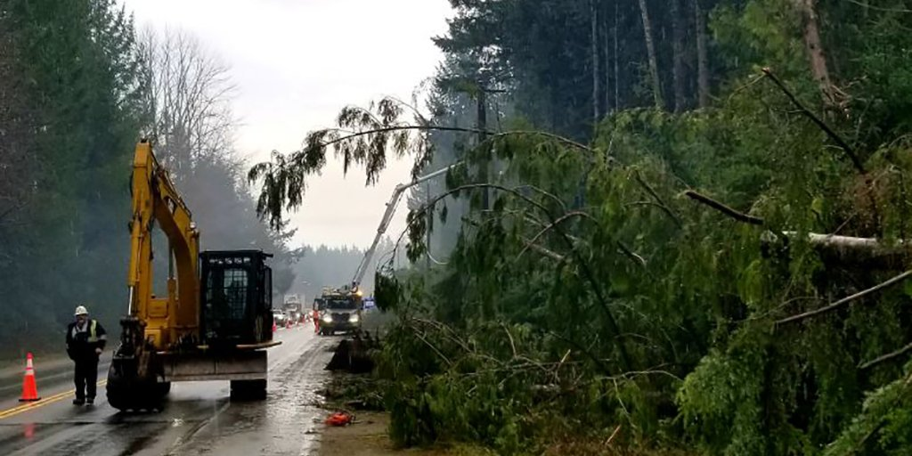 BC Hydro crews work to repair damage on Vancouver Island following the major windstorm in December 2018. A new wind warning in the region has brought several other trees down on wires and buildings Saturday.