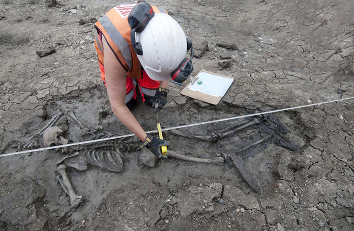 """British archaeologists have unearthed a """"mysterious"""" skeleton found lying face down in the mud near the shore of the River Thames in London."""