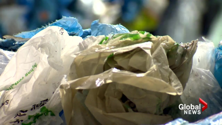 FILE - Newfoundland and Labrador is banning plastic bags in stores and retail outlets.