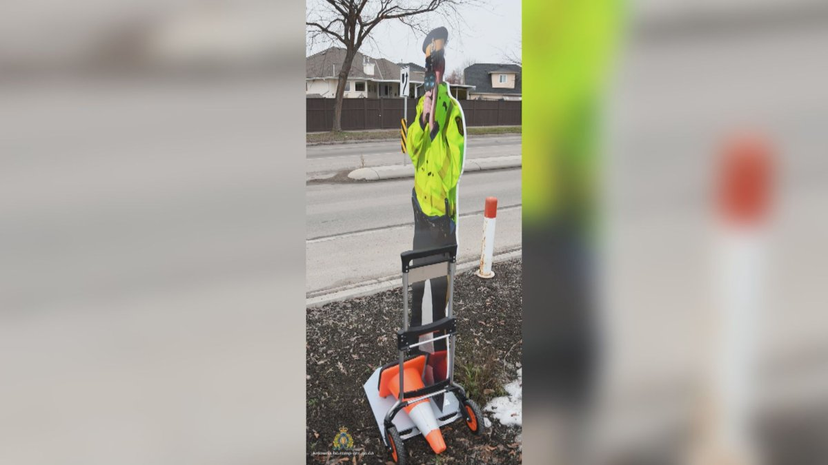 A cardboard cutout of a Mountie posted in a school zone has been stolen, according to police.