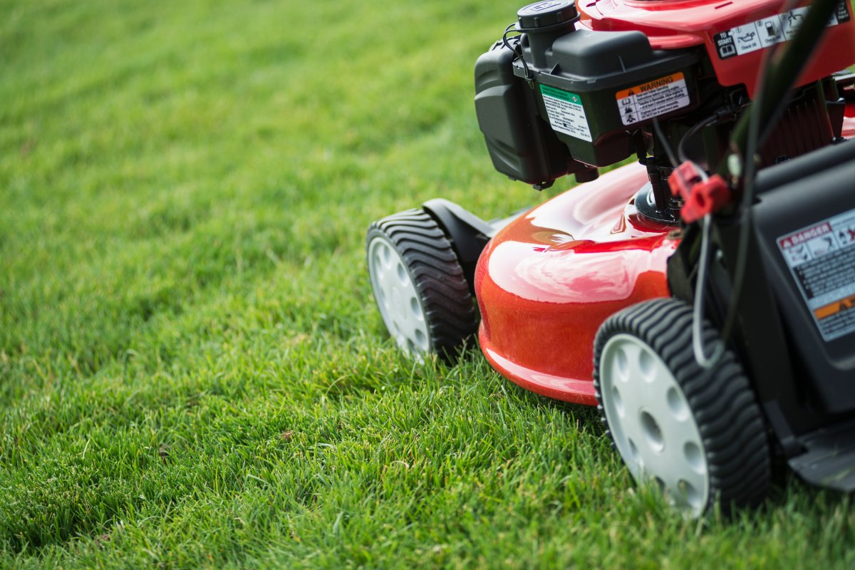 If you bought a gas-powered lawnmower between 1994 and 2012 you could get cash back.