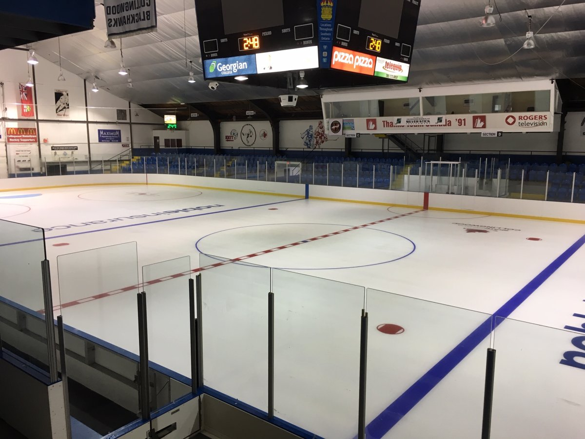 Collingwood has been granted an expansion franchise by the Greater Ontario Junior Hockey League.