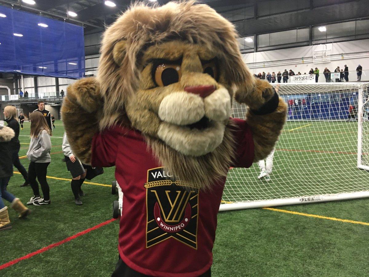 Valour FC mascot Vic the Lion strikes a pose.