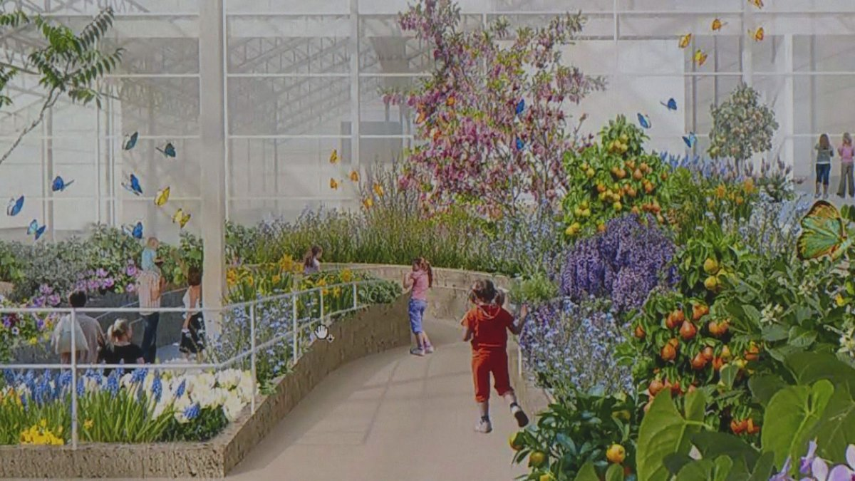 An artist's rendering of  the renovated Montreal Insectarium.