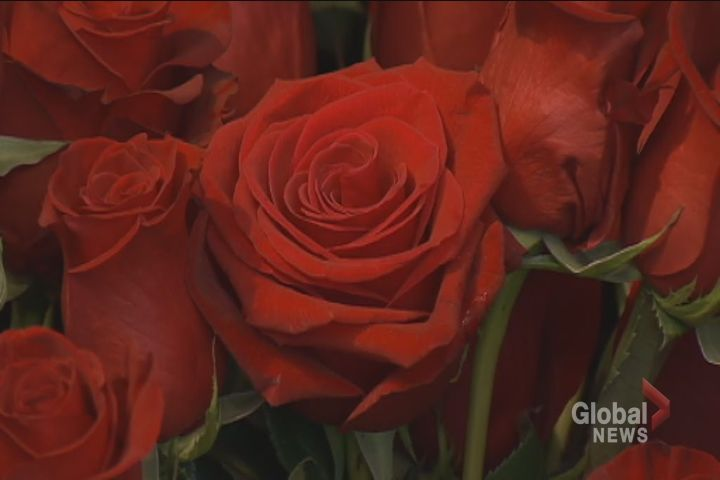 Forest of Flowers says roses remain the most popular Valentine's Day order.