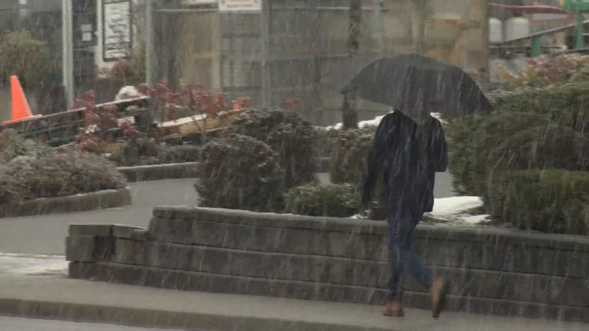 A person makes their way through thick flurries in Burnaby on Saturday morning.