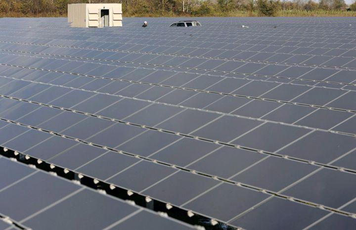 A Canadian solar farm. File image.