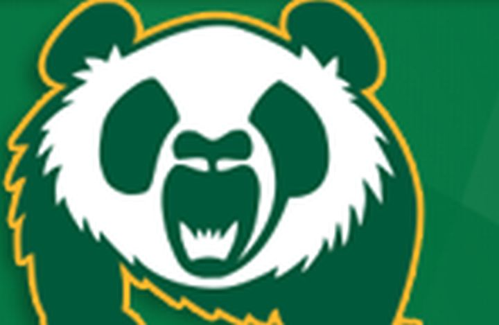 A file photo of the Alberta Pandas logo.