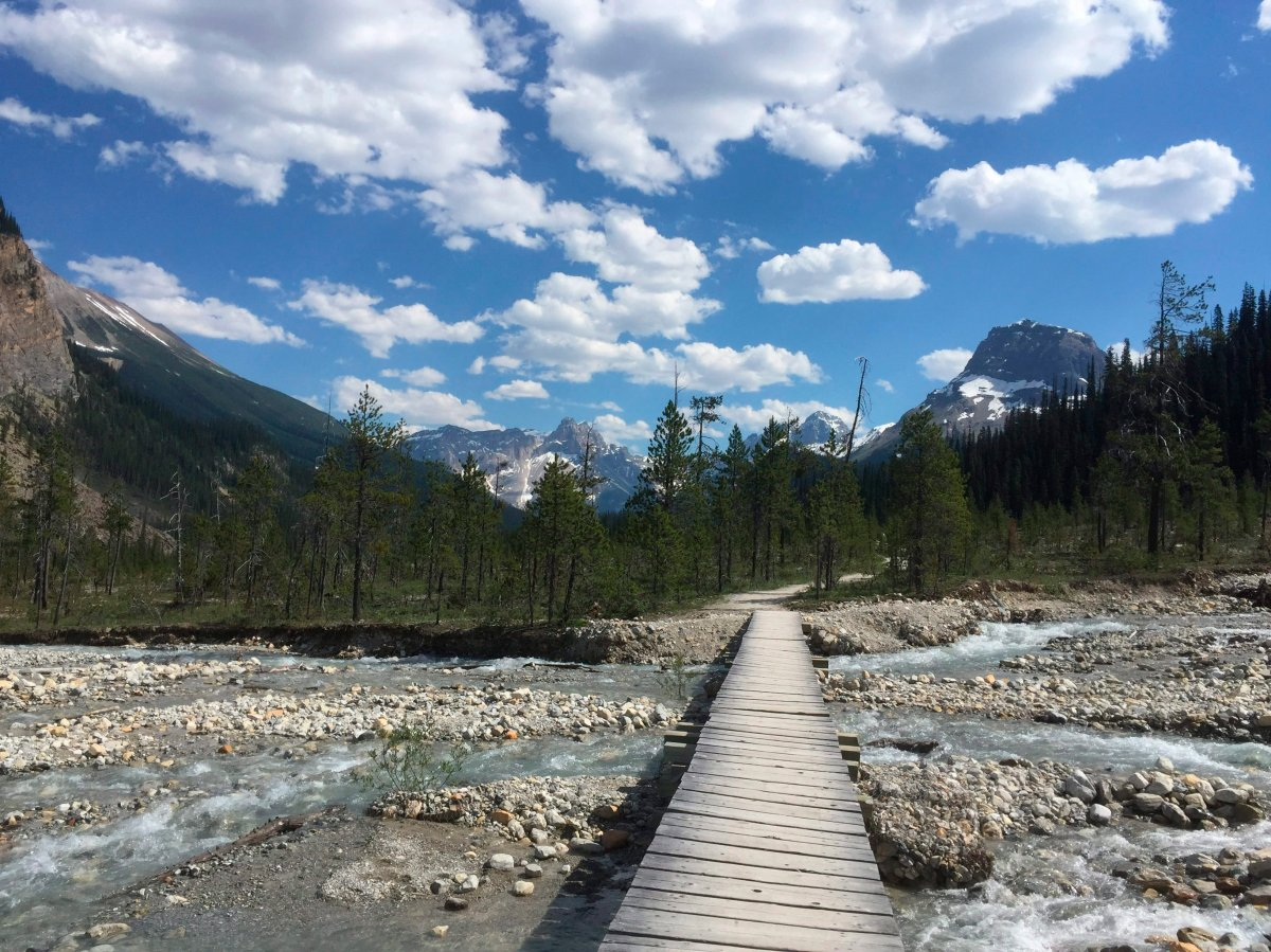 In this July 6, 2017 photo, a bridge crosses a stream along the Iceline Trail in Yoho National Park in Canada's stretch of the Rocky Mountains, straddling the border of British Columbia and Alberta.