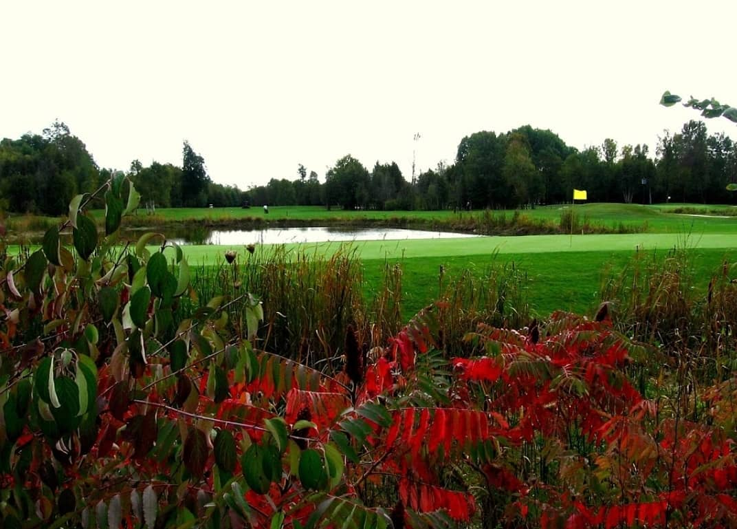 An image of the Rolling Greens Golf Club. The cannabis-themed course is scheduled to open this spring.