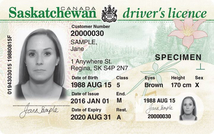 Customers have the option to designate their sex on Saskatchewan-issued driver's licence or photo ID with a non-gendered option by indicating X.