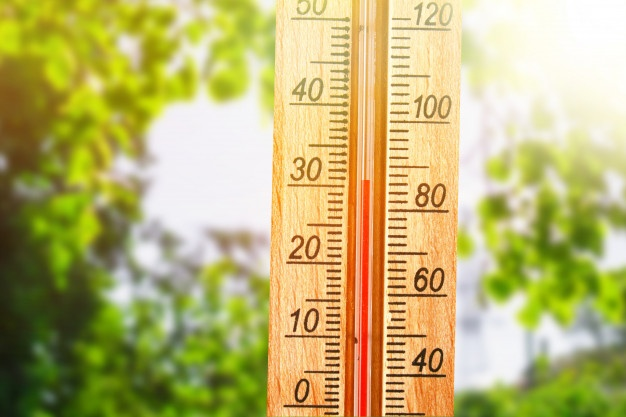 With the humidex making it feel like 40 C in London, weather experts are predicting this could be the hottest week of the summer for London and southwestern Ontario.
