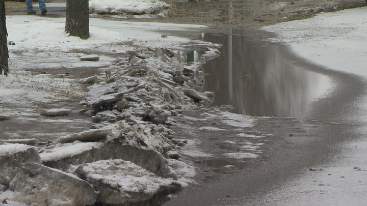 The City of Regina had a total of 52 water-main breaks in the month of February, compared to a five-year average of 17.