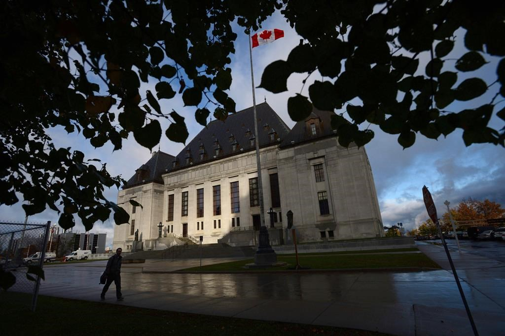 Saskatchewan is asking the Supreme Court of Canada if the federal carbon tax is constitutional.