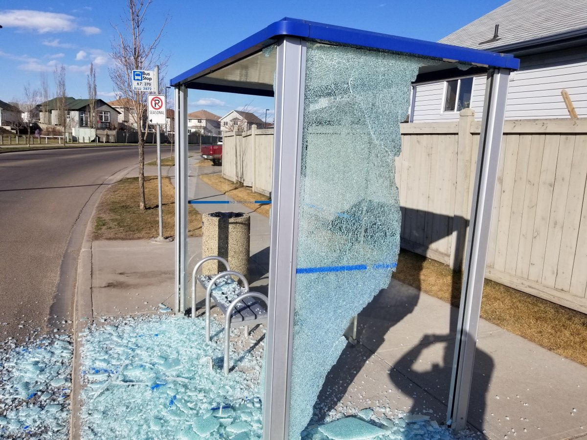 A 17-year-old boy has been charged in connection with the alleged vandalism of several Edmonton bus shelters.