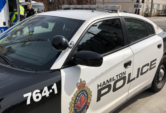Hamilton police are investigating after a string of reported licence plate and vehicle thefts in the city.