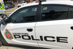 Continue reading: Teen girl charged after crash involving reportedly stolen vehicle in Hamilton