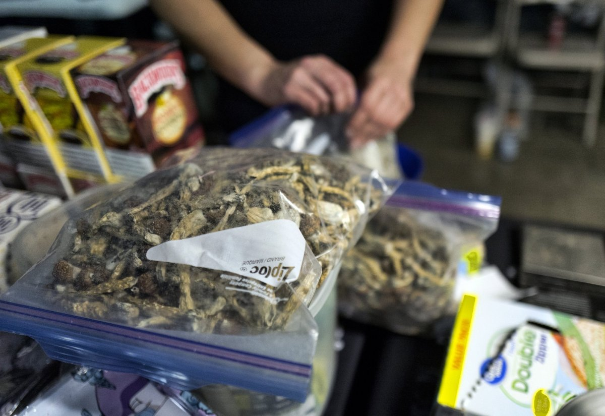 """A vendor bags psilocybin mushrooms at a pop-up cannabis market in Los Angeles on Monday, May 6, 2019. Voters decide this week whether Denver will become the first U.S. city to decriminalize the use of psilocybin, the psychedelic substance in """"magic mushrooms."""" ."""