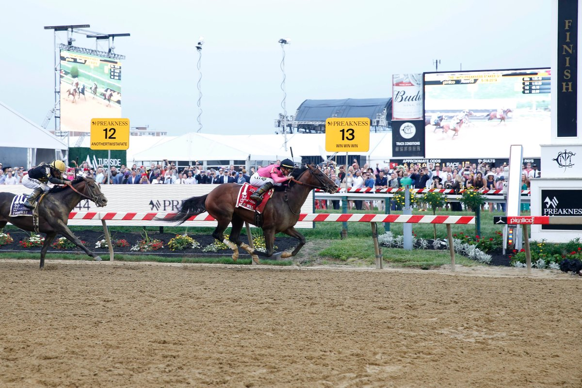 Tyler Gaffalione aboard War of Will (1) wins the 144th running of the Preakness Stakes at Pimlico Race Course.