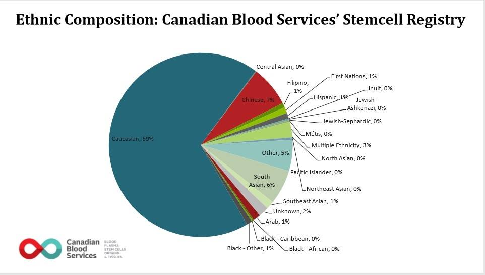 A breakdown of the ethnic composition of Canadian Blood Services' stem cell registry