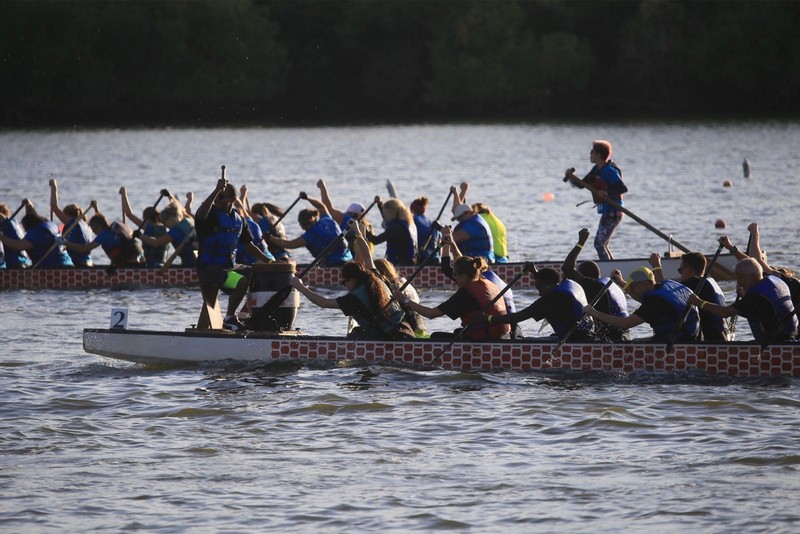 Regina's Dragon Boat Festival has been cancelled this year due to concerns over the coronavirus pandemic.