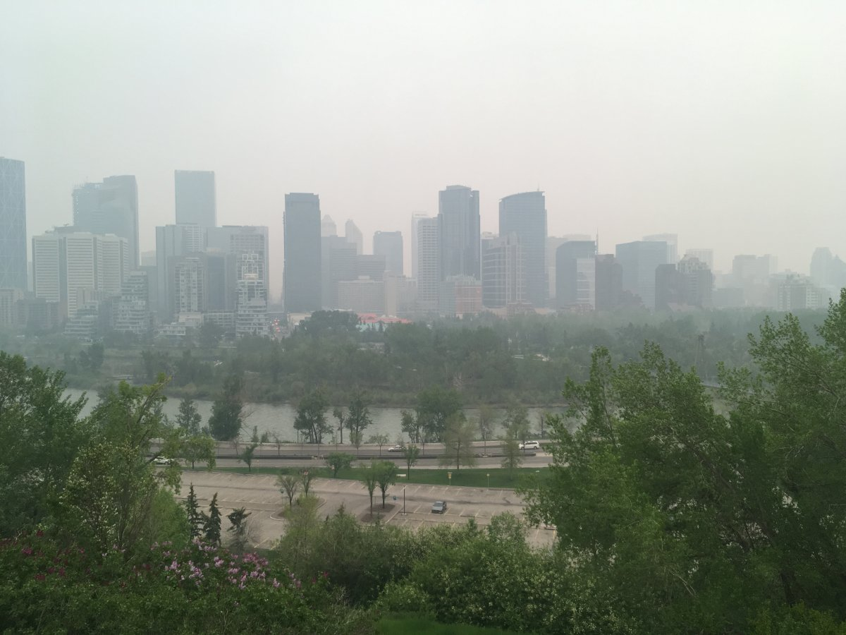 Photo taken by Barb De Vos in Calgary, Alta. on May 31, 2019 .