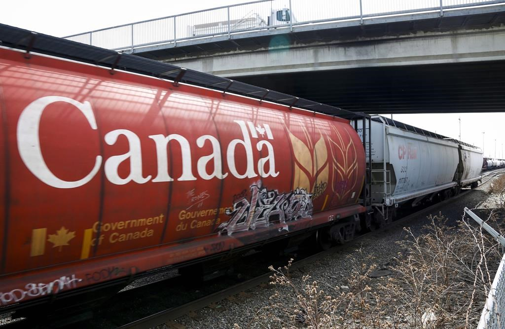 A Canadian Pacific Rail train hauling grain passes through Calgary, Thursday, May 1, 2014.