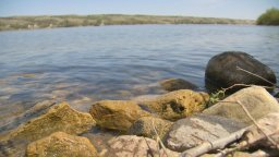 Continue reading: Global warming: University of Regina study shows high toxic algae levels in prairie lakes
