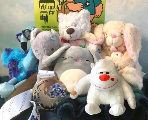 These bears were left behind after several owners went missing on Sunday at the Teddy Bears Picnic.