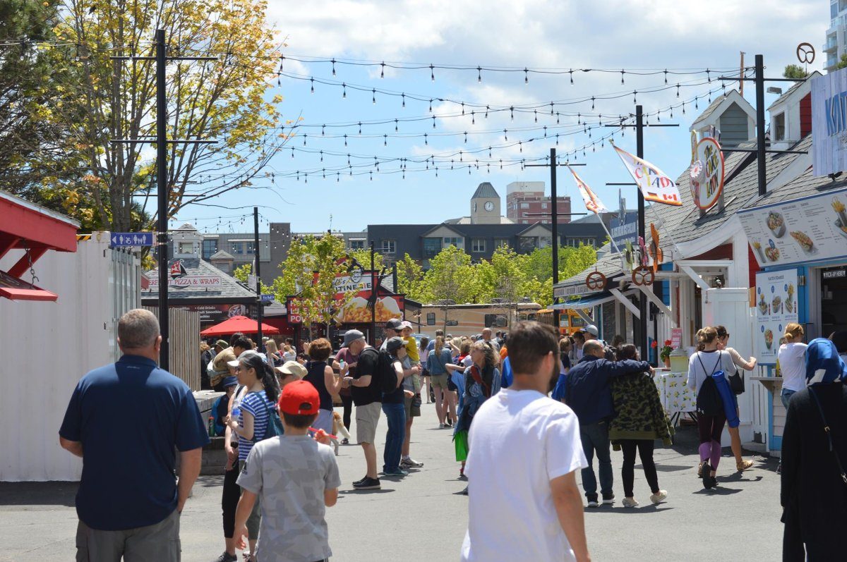 A bustling Halifax waterfront on June 15, 2019.
